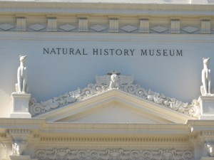 natural-history-museum-outside