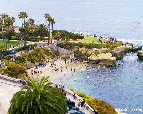 Overlooking the beach in La Jolla Cove