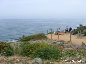 Guy Fleming Overlook at Torrey Pines State Reserve