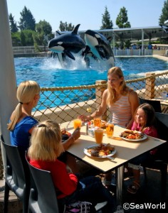 Breakfast with Shamu at SeaWorld San Diego