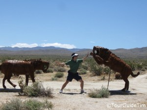 TourGuideTim separating the animals in Borrego Springs
